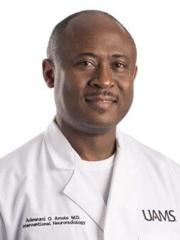 Adewumi D. Amole, M.D.